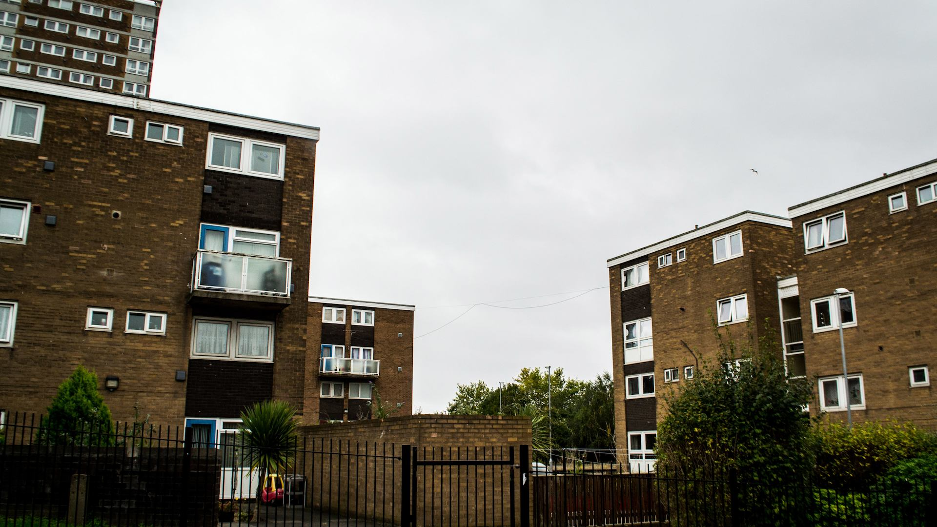 council homes