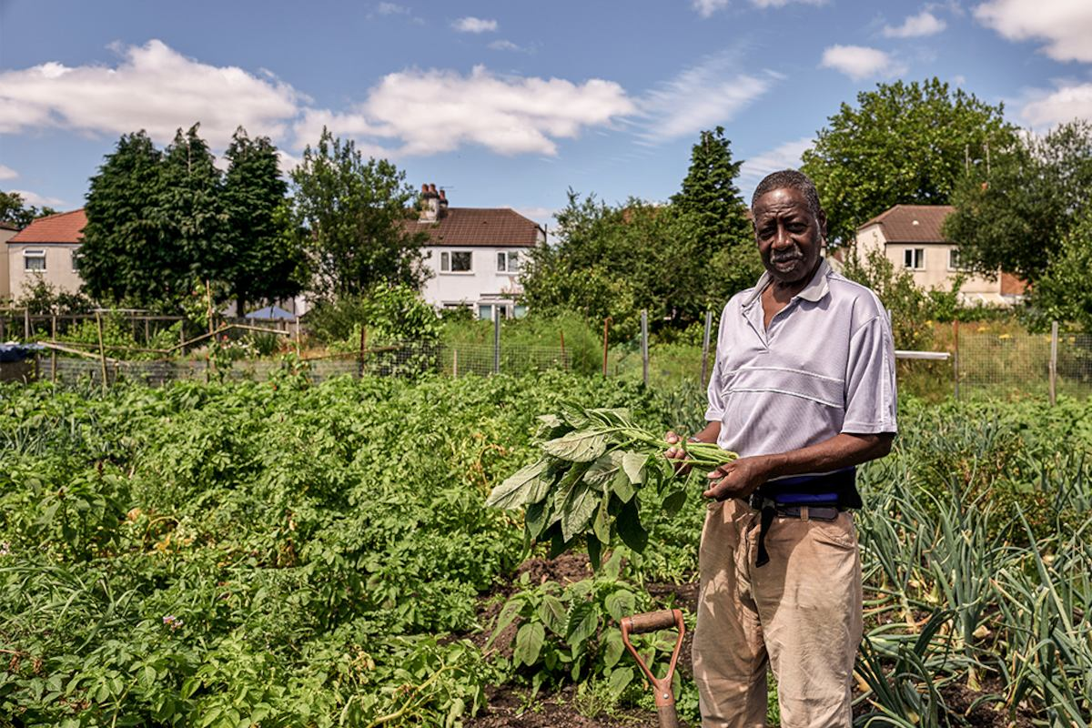 man in allotment