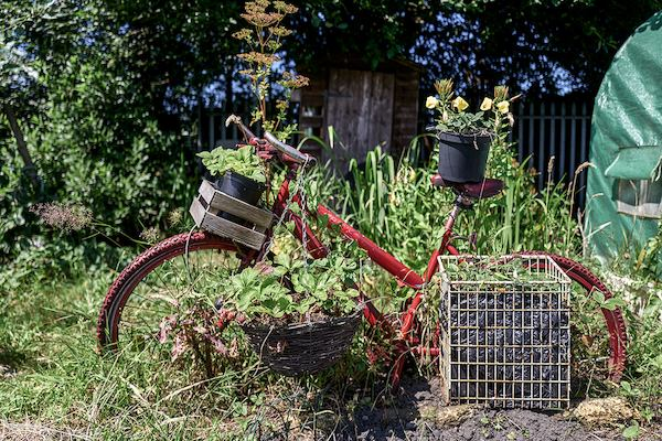 Bicycle with flower pot